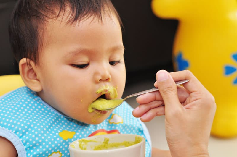 Feeding A Baby Blended Food
