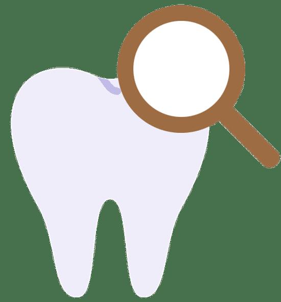 Paediatric Dental Check